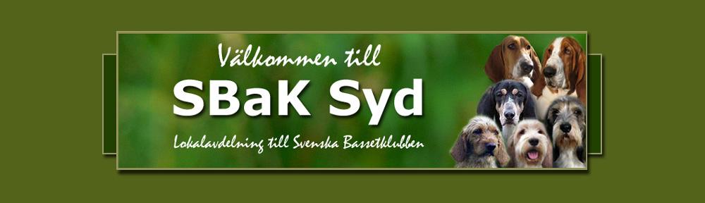 SBaK Syd